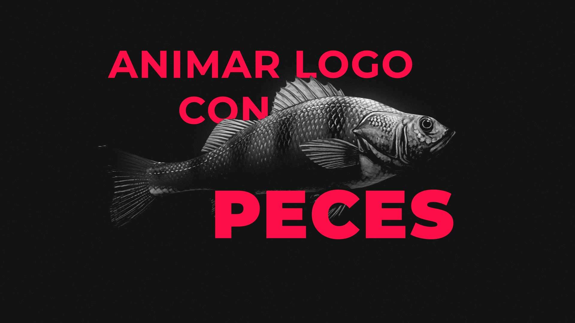 Animar-logo-peces-imagen-post-animarlogo