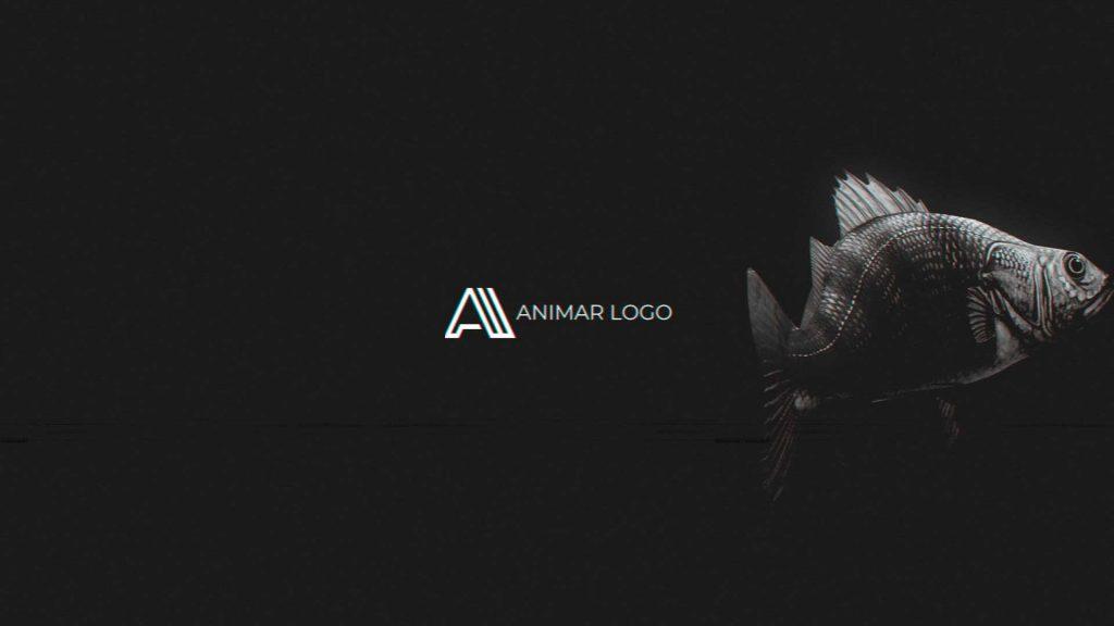 Logo-animado-Pez-distorsión-AL174-animacion-logotipo
